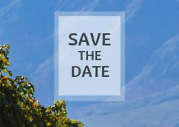 save-the-date-thumb